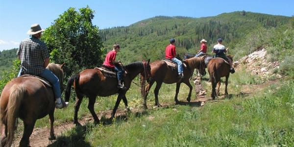 Alpine Meadows Stables Horseback Riding Lake Tahoe CA