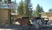 The Capri Motel Horse Carriage