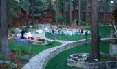 Deerfield Lodge at Heavenly Wedding