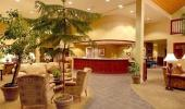 Forest Suites Resort Hotel Interior