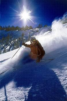 Pet Friendly Hotels Near Squaw Valley
