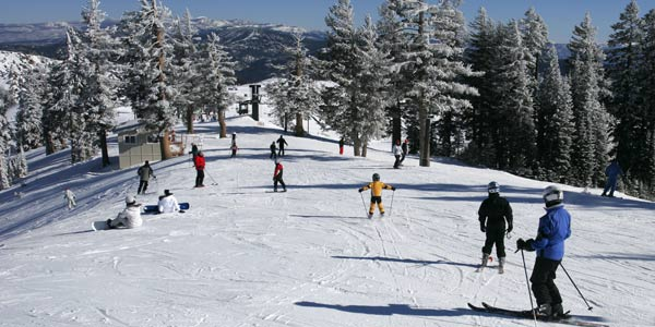 Go skiing in Lake Tahoe CA