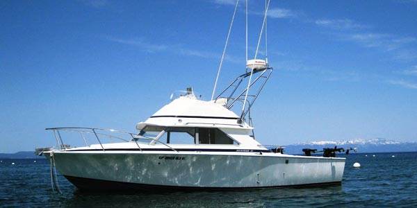 Lake Tahoe Fishing with Action Water Sports