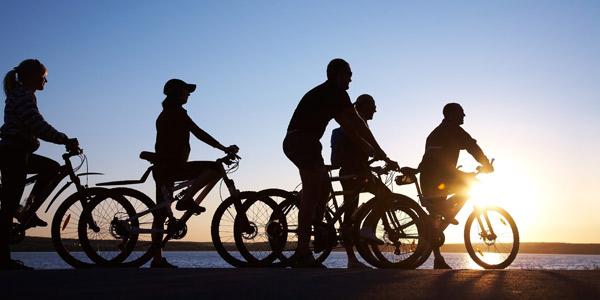 Wanna Ride Bike Shuttle and Tours Lake Tahoe