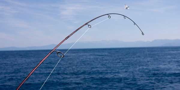 Fishing Lake Tahoe