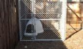 5 Star Luxury Cabin Dog Kennel